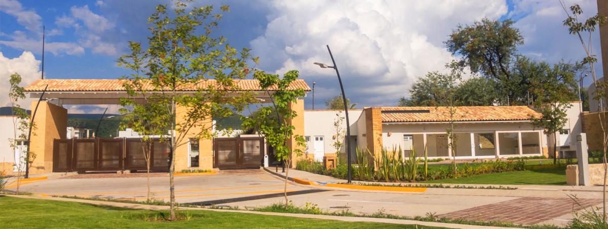 Punta del Cedro 1