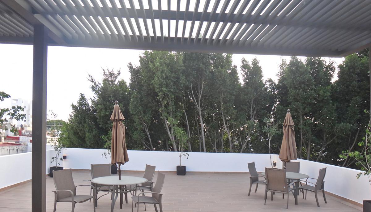 Torres Altima 5