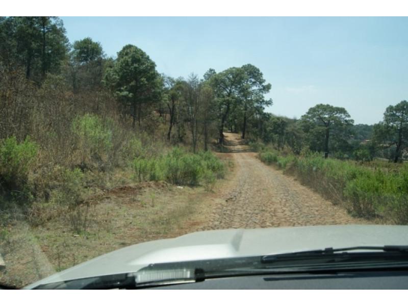 El terreno es irregular, abriendo por la parte posterior a 182 mts Cuenta con subdivision en 15 terrenos de 500 a 650 mts cada uno 10