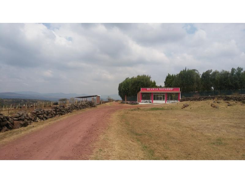 Magnifico Terreno en venta,en el Poblado de Rancho Viejo a 5 minutos de Concepción de Buenos Aires, EXCELENTE PRECIO 60 pesos mt.  *SE ACEPTA PROPIEDAD EN GUADALAJARA* 11