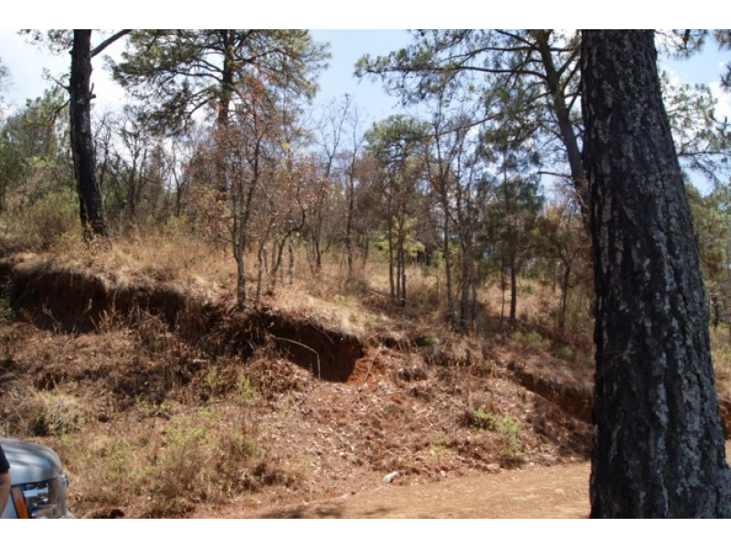 El terreno es irregular, abriendo por la parte posterior a 182 mts Cuenta con subdivision en 15 terrenos de 500 a 650 mts cada uno 12
