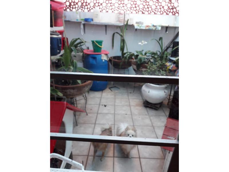 Se Vende casa en Colonia Santa Rosa, Guadalajara, Jal.  Casa en venta en Col. Santa Rosa, en la planta baja cuenta con cochera cubierta para 2 autos, sala, comedor, cocina integral, baño completo. En primer nivel 3 recamaras y patio de servicio. En el 2do nivel terraza con protecciones cuenta con malla electrificada, se encuentra en muy buenas condiciones. La propiedad tiene 1 año de remodelación.      18