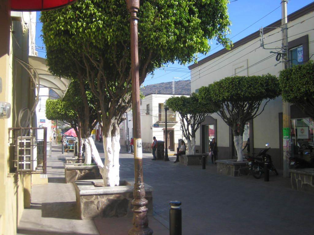 Inversionistas !! propiedad comercial frente a la plaza municipal con 4 locales a la renta.  Están 2 tiendas Coppel una a lado y otra cercana del Local, enfrente Banco Azteca, casi enfrente Bancomer, enfrente de la plaza Oxxo, más a la redonda de la plaza un HSBC, a dos cuadras Farmacia Guadalajara, Telcel, Hotel, dos iglesias, el mercado municipal, en general, comercios de abolengo, que no venden ni rentan, sino heredan, por lo que es muy atractiva, además de su excelente ubicación cuenta con 3 entradas !!! Serán Contratos de Arrendamiento a 5 años.  Actualmente estarán en obra para habilitar los locales entre Octubre y Noviembre se estará terminando.  Usos de suelo: mixto Servicios de la zona: agua, luz, drenaje, pavimento, transporte.  11.8 mts norte 7 mts Sur 21 mts Oriente 15.8 mts Poniente. EasyBroker ID: EB-BX1633 3