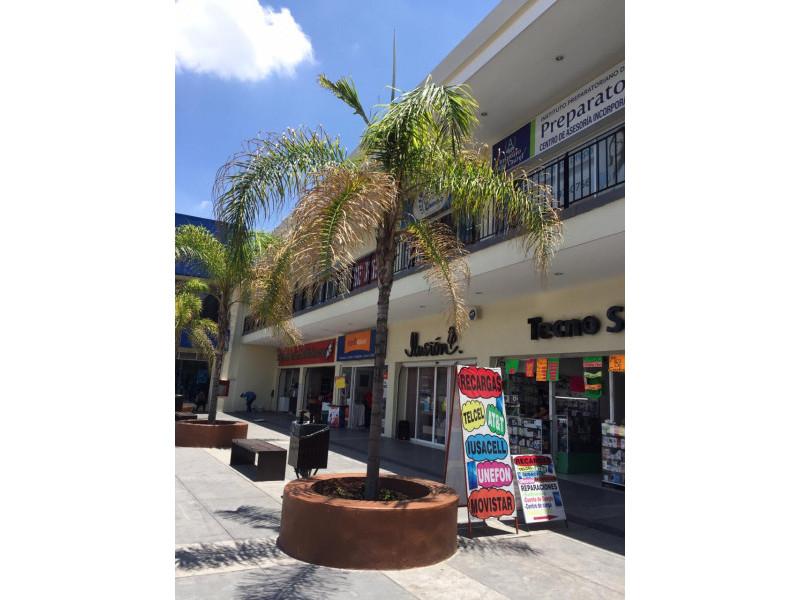 Increíbles Locales en RENTA, en Plaza Santa Fe, Tlajomulco de Zuñiga con ubicación privilegiada con alto flujo vehicular y peatonal.   Local 10 en Planta Alta $16,000 con 100 M2 Local 5 en Planta Baja $35,000 con 100 M2 Local 6 en Planta Baja $50,000 con 150 M2 Tiene una apertura al final detrás de las escaleras  4