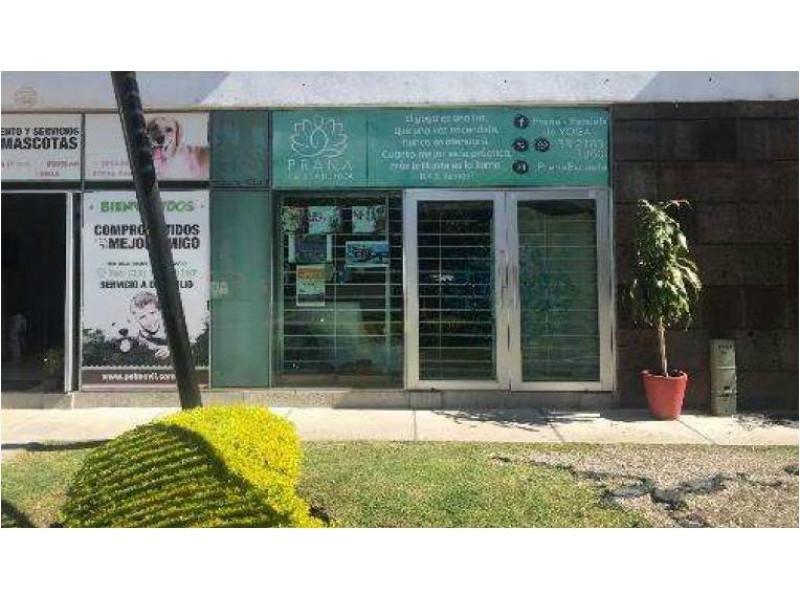 Local comercial moderno de buena calidad desarrollado en un nivel, medio baño. Plaza comercial con amplio estacionamiento FRACCIONAMIENTO EL REAL 4