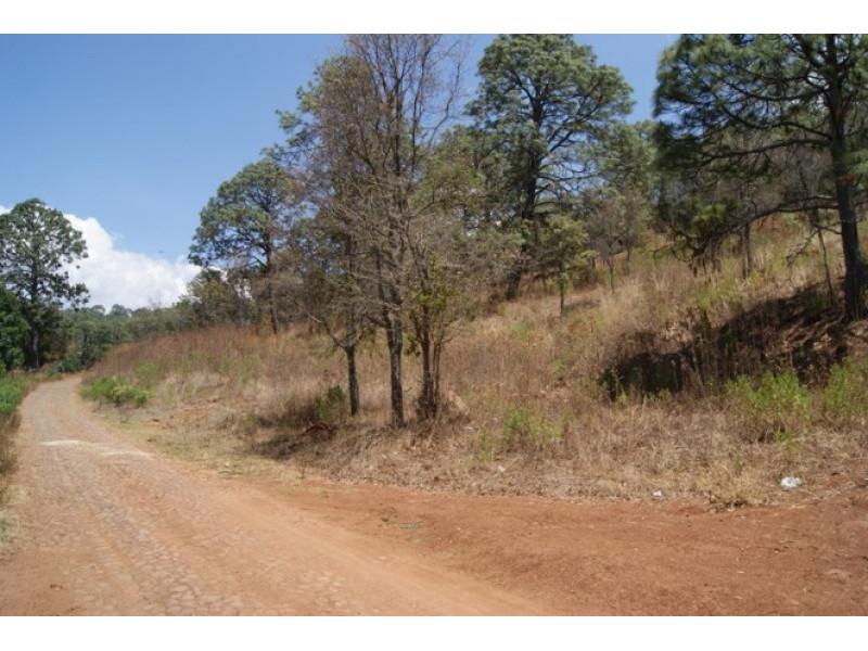 El terreno es irregular, abriendo por la parte posterior a 182 mts Cuenta con subdivision en 15 terrenos de 500 a 650 mts cada uno 7